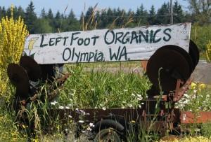 left-foot-4